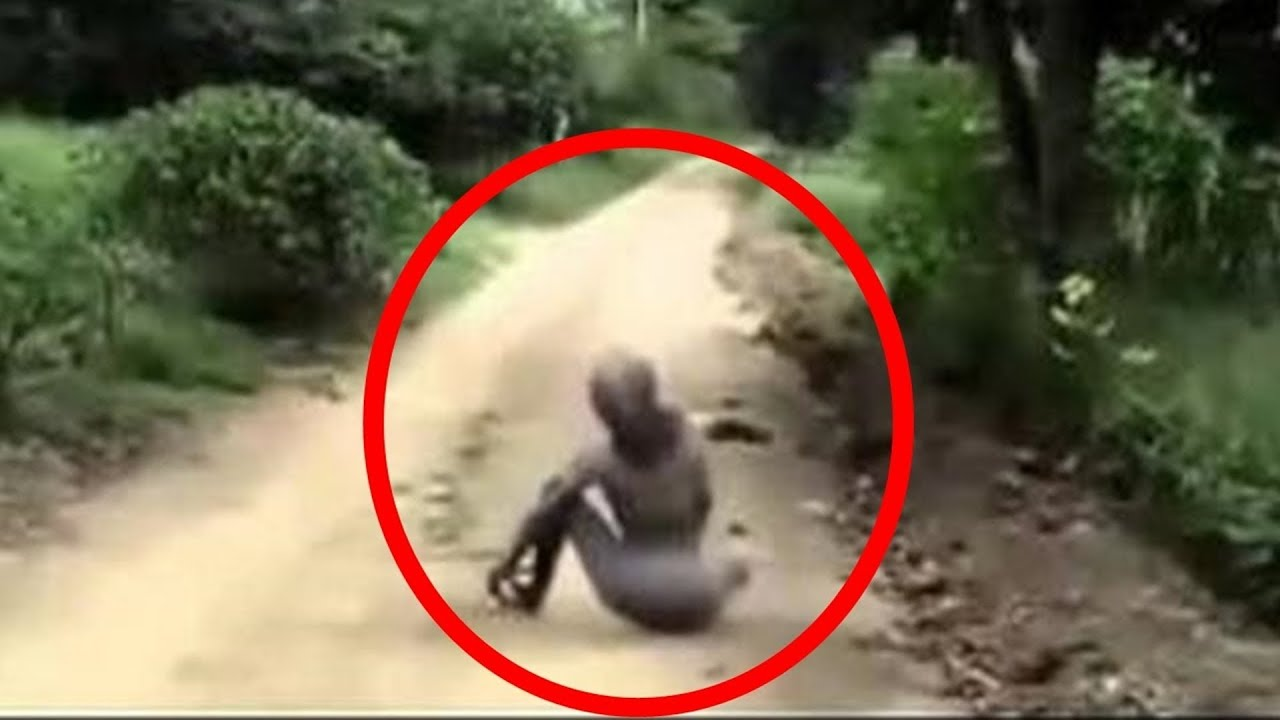 Real Alien Sightings Caught On Camera - Inspirational Interior style