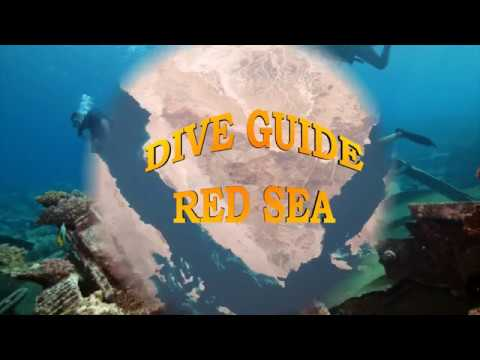 DIVE GUIDE RED SEA