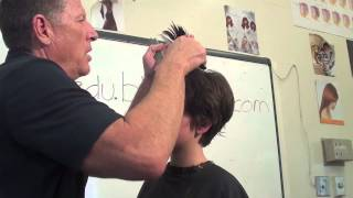 Short Haircut; scissors/razor