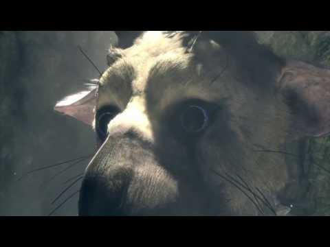 The Last Guardian - Liberando a Trico y conociendo sus secretos