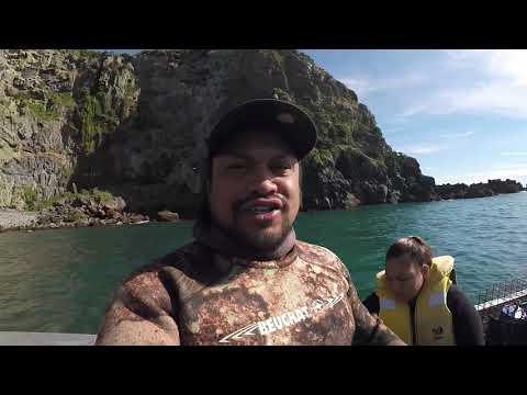 Christchurch Godly Heads Dive NZ