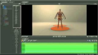 13.1 Poser pour la Pose d'Animation
