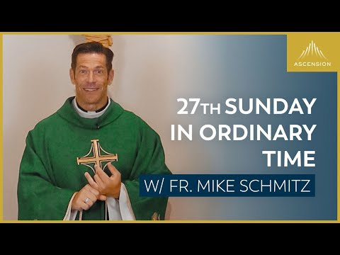 Twenty-seventh Sunday in Ordinary Time - Mass with Fr. Mike Schmitz