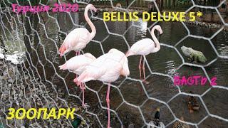Отдых в Турции 2020 Лучший ЗООПАРК в отеле BELLIS DELUXE Анталия Белек Отель для семейного отдыха