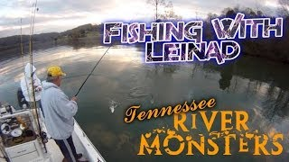 Fishing for Skipjack Herring in Tennessee