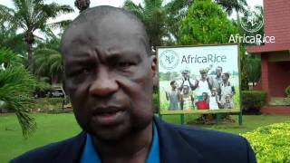 GRiSP Africa Rice Task Force Launch