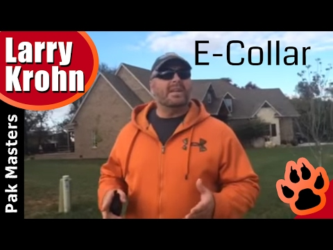 Advanced E Collar /Remote Collar Training /Helping Dogs Through Remote Communication