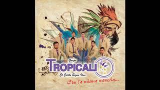 Grupo Tropicali El Estilo Sigue Vivo - Déjenme Llorar (Audio Oficial)