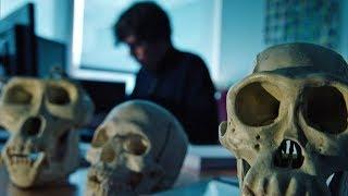 Urmensch – wie viel Neandertaler steckt in uns? HD 2017