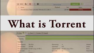 how to download torrented files    Enhance  downloading speed    Complete solution of Torrent