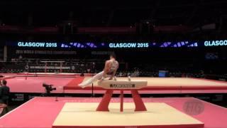 ALEKSANDROV Yordan (BUL) - 2015 Artistic Worlds - Qualifications Pommel Horse