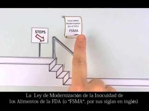 Ley de Modernización de la Inocuidad de los Alimentos de la FDA: Un Manual de la FDA