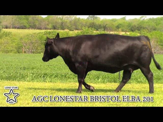 AGC Lonestar Bristol Elba 201