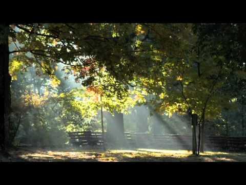 Mount Sequoyah Apportionments