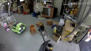 CCTV 애견용품창고에…