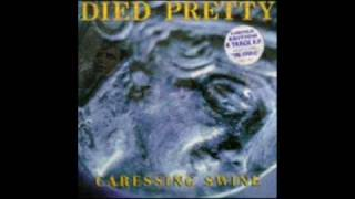 Died Pretty - The Cross