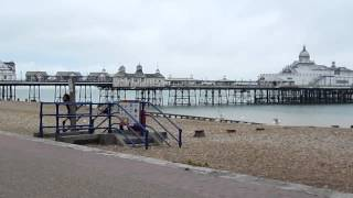 Video Girls being attacked by seagulls in Eastbourne download MP3, 3GP, MP4, WEBM, AVI, FLV November 2017