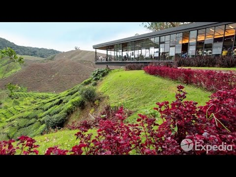 Cameron Highlands - City Video Guide