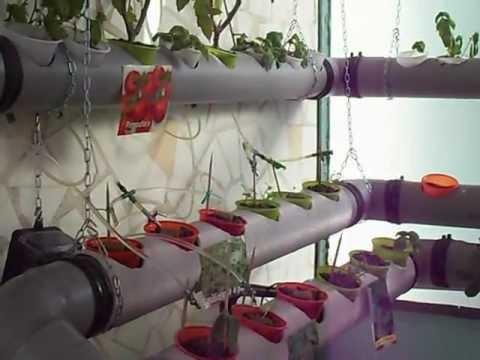 L 39 orto idroponico nel terrazzo 1 puntata youtube for Orto pensile fai da te