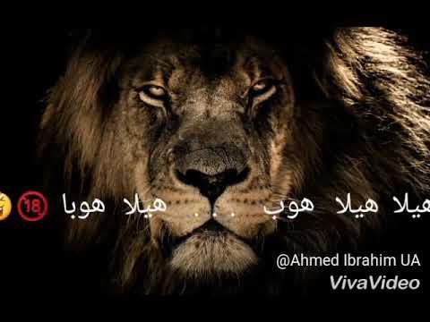 ملك الغابه محمد رمضان باسم 7