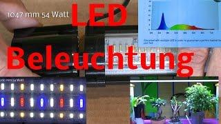 led licht fr bonsai pflanzen und aquarium