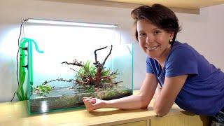 Запуск аквариума / Камни с речки / Посадка растений / Оформление аквариума