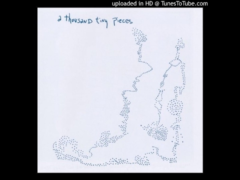 Sean Hayes - A Thousand Tiny Pieces