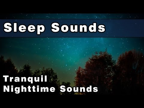 Tranquil Night Sounds To Sleep To, Cricket Noise, Katy did Sounds, Grass Hoppers, Rainsounds