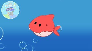 Rainbow Shark | Children's and Kid's Songs | Little Twinkle Bus thumbnail
