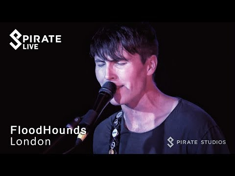 FloodHounds - 'Take It Too Far' // Pirate Live // Pirate Studios