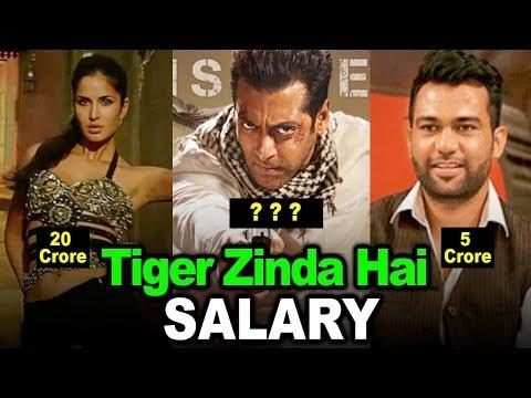 Shocking Salary Of Tiger Zinda Hai Actors | Salman Khan, Katrina Kaif
