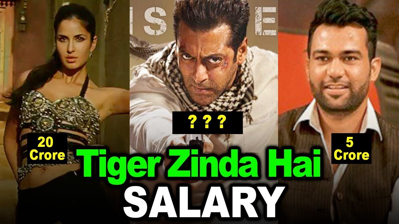 shocking salary of tiger zinda hai actors salman khan katrina kaif