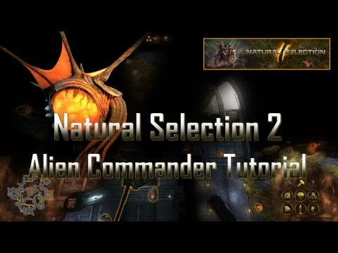 Natural Selection 2 Alien Commander Tutorial