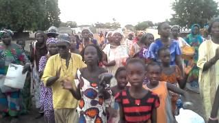 Birkelane bawounane  troupe de thierere