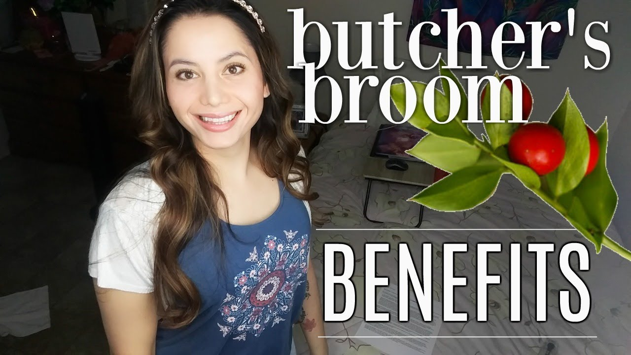 Butcher S Broom Benefits Natural Varicose Veins Remedy