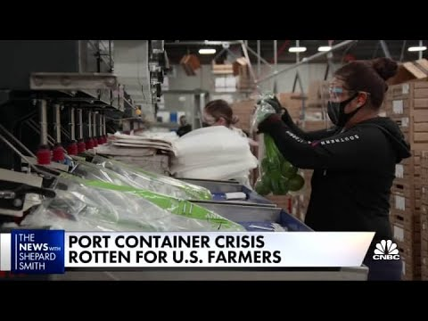Port container crisis creates rotten fruit for U.S. farmers