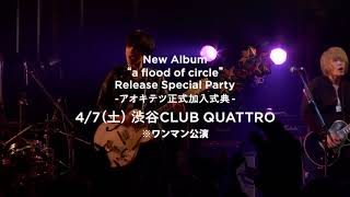 【新メンバー加入の瞬間】a flood of circle 8th Full Album「a flood of circle」