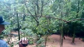 Parque das Aves Foz