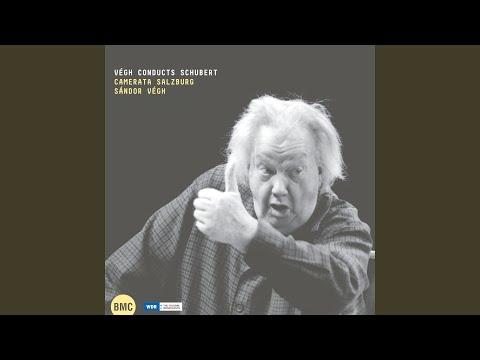 Symphony No. 1 in D Major, D. 82: IV. Allegro vivace