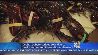 Lobster Shortage Sends Prices Soaring