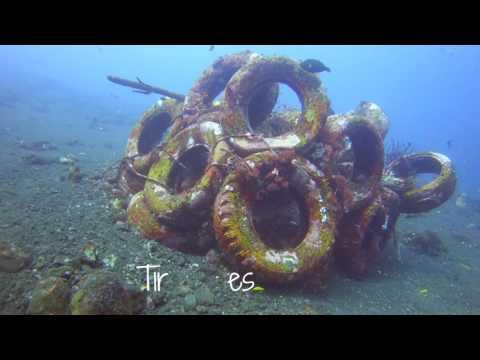 Artificial Reefs of Tulamben, Bali