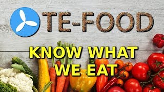 TE-Food (TFD) Review + Price prediction! (2018)