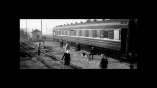 Прикладная дрессировка собак в СССР.  Тестирование на преобладающую реакцию в полевых условиях.