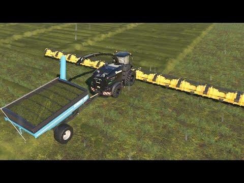 Ridiculously Unrealistic EP#5   Lazy Acres   FS19 TIMELAPSE   Farming Simulator 19 Timelapse  