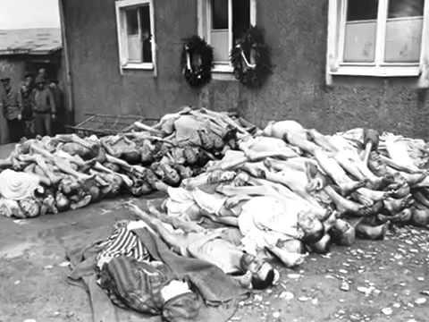 1940 германии фото эро 1945
