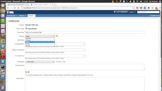 JIRA Tasks and Sub-tasks Issue Tracking Video