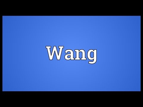 Wang Meaning