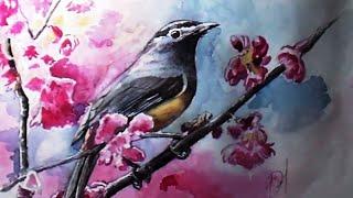 Как нарисовать птицу. Видеоурок для начинающих, как рисовать акварелью
