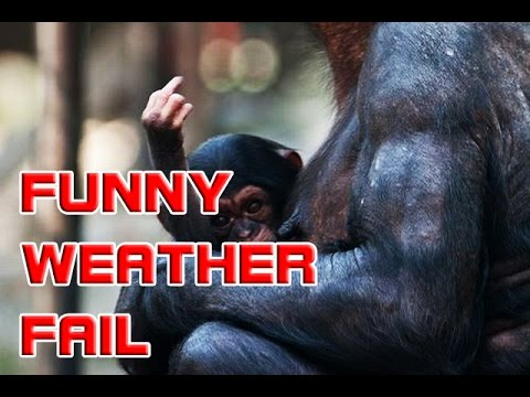 Funny and Weird Weather Fails 2016 Best Nature Fails    EPICFailCompilation