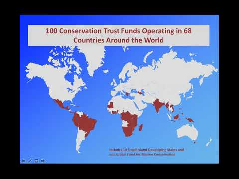 Catalyzing Finance Through Conservation Trust Funds: Trends and Lessons for the Future